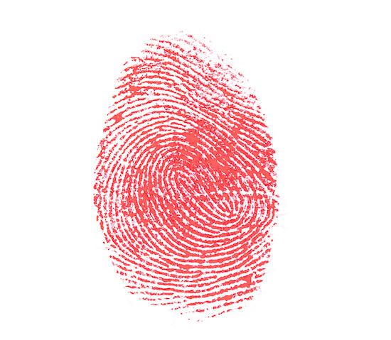The Shepherd's Fingerprints